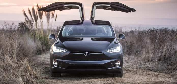24 New 2019 Tesla Model Y Images