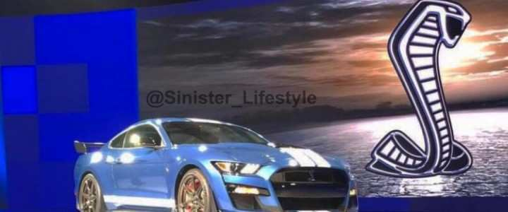 26 The 2020 Ford Shelby Gt500 Price Spy Shoot