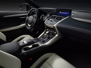 46 A Lexus Nx 2020 Interior Performance
