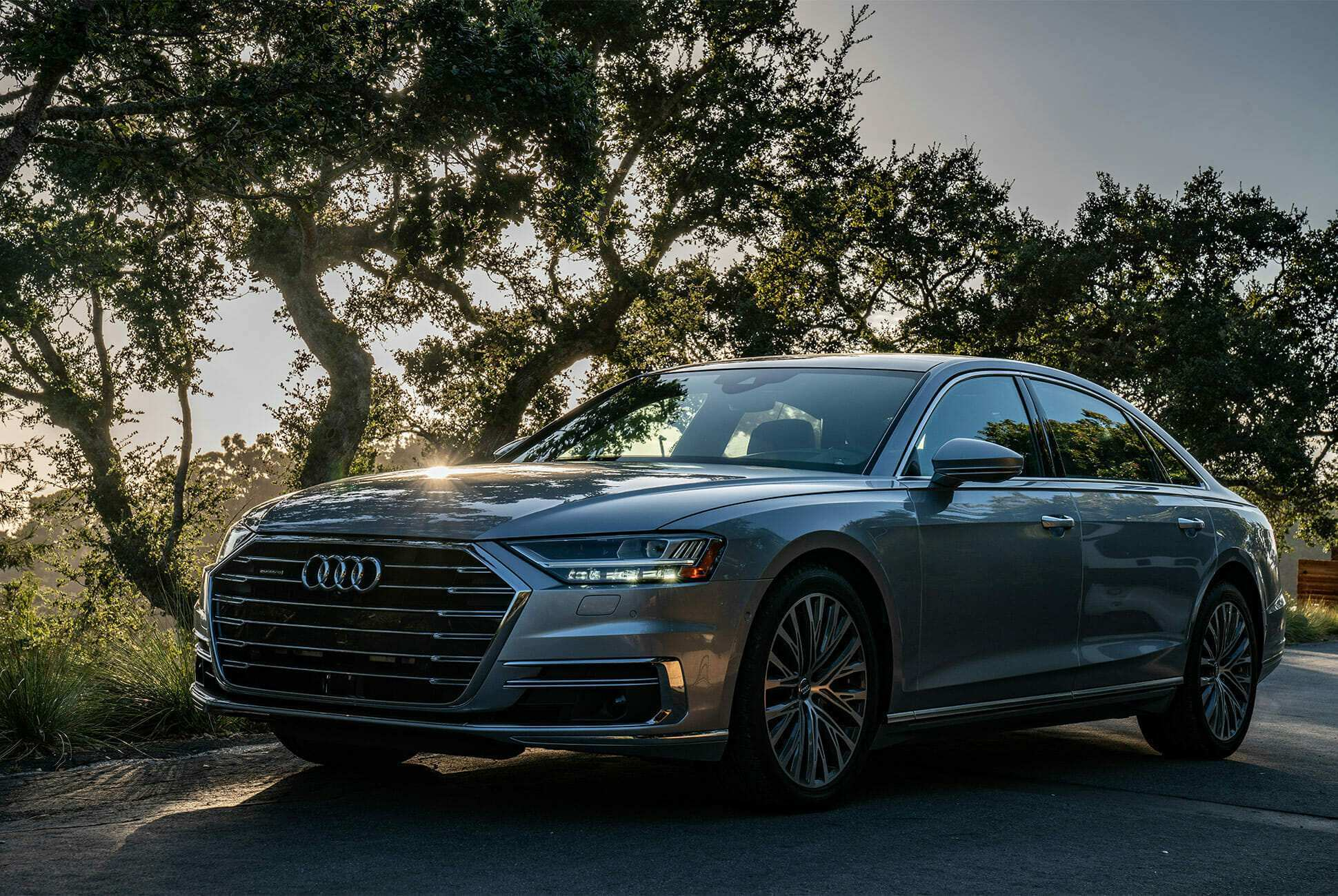 56 All New 2019 Audi S8 Price and Review