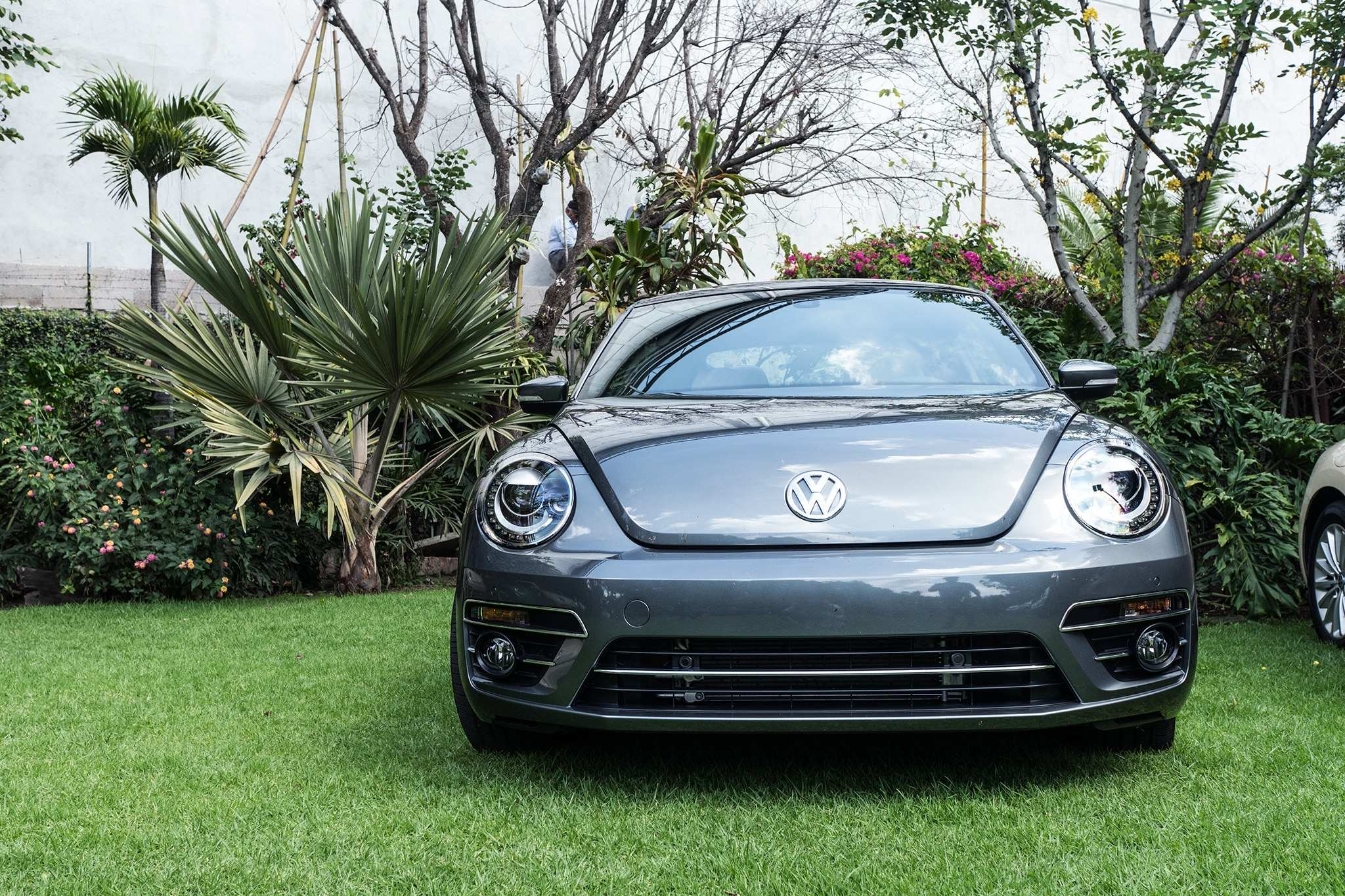59 A Volkswagen Vocho 2020 Review And Release Date