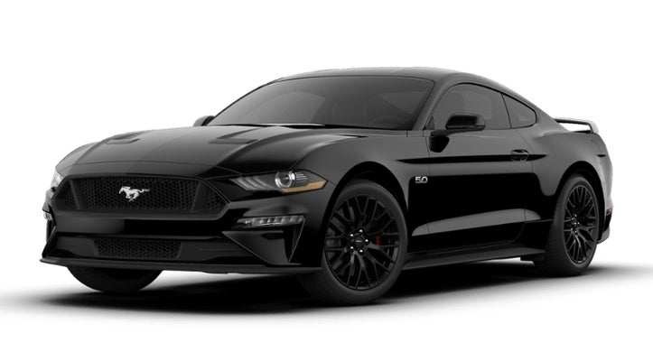 67 The 2019 Ford Gt Mustang Performance And New Engine