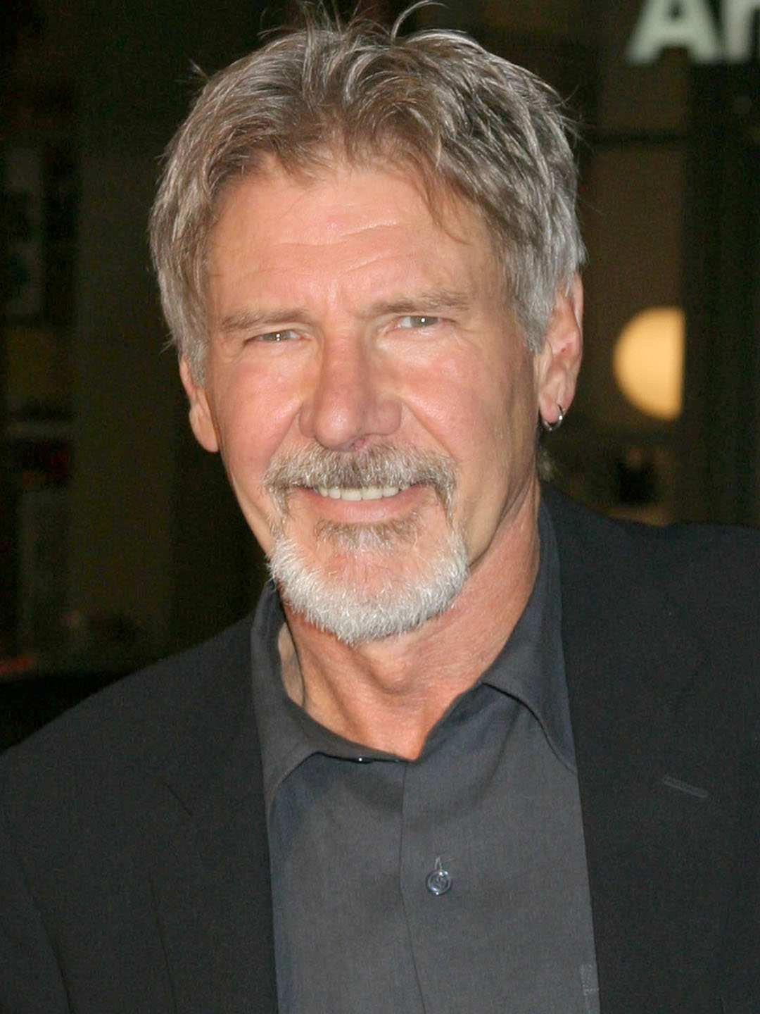 69 All New 2020 Harrison Ford Price
