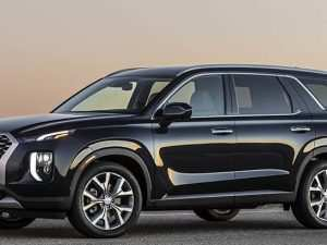79 New 2020 Hyundai Palisade White Price Design and Review