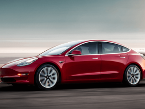 80 New 2019 Tesla Model 3 Picture
