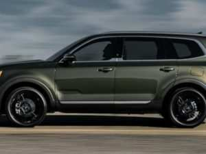91 The Best 2020 Kia Telluride Interior Colors Pictures