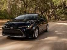38 All New Toyota Egypt Corolla 2020 First Drive